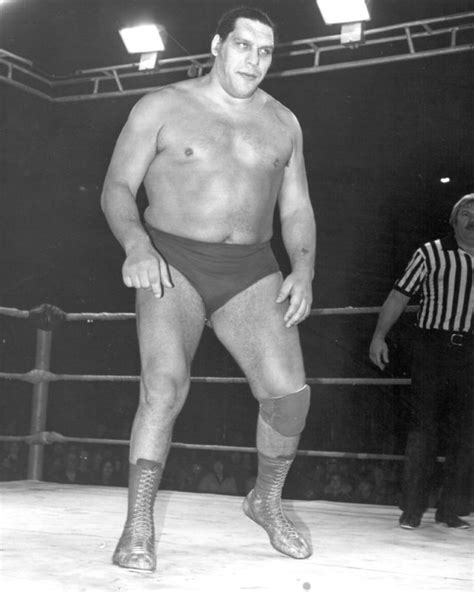 Andre The Giant - The Official Wrestling Museum